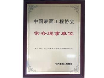 在中国表面工程协会常务理事单位